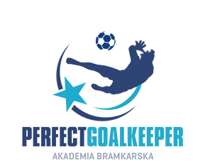 Perfect Goalkeeper | Akademia Bramkarska